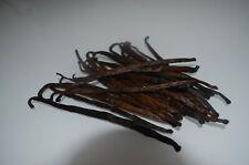 10 PODS  Madagascar Vanilla Pods Planifolia Beans GRADE B Dry make to extract