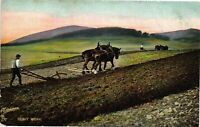 Vintage Postcard - Men Working The Field With 2 Teams Of Horses Un-Posted  #2088