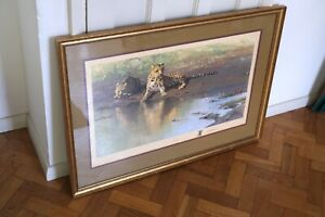David Shepherd limited edition framed print, Cool Waters