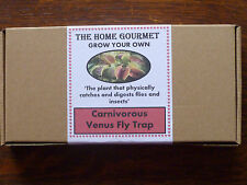 Grow Your Own Venus Fly Trap Complete Kit 'Free Delivery'