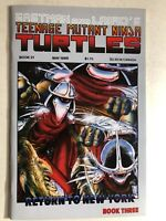 TEENAGE MUTANT NINJA TURTLES #21 (1989) Mirage Press VG+/FINE-
