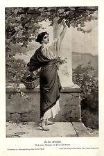 Paul Thumann In der Weinlese Frauenmotiv Historischer Kunstdruck 1908