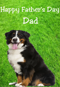 Bernese Mountain Dog hs64 The Garden Fun Cute Happy Father's Day Greeting Card