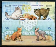 Russia Cats Stamps 2020 MNH Domestic Animals Pets 4v S/A Block