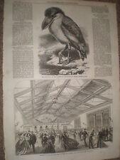 Apertura di nuove Drill Hall Mid Lothian dell'Artiglieria I VOLONTARI Edimburgo 1867 Print