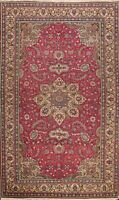 Vintage Floral Anatolian Turkish Oriental Area Rug Hand-knotted Wool Carpet 5x7