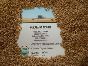 15 Lbs. Bulk Organic Hard Red Winter Wheat Berries, Non-GMO, Nebraska-grown