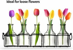 Set of 5 Crystal Clear Flower Vase  Small Glass Bud Vases