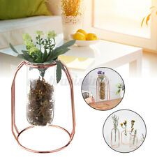 Hydroponic Glass Vase Plants Pot Flowers Terrarium Container Holder Tube Decor
