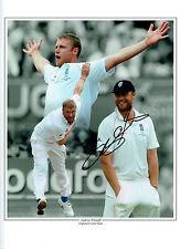 Andrew FLINTOFF Signed Autograph 16x12 Montage Photo AFTAL England Cricket