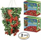 2 Topsy Turvy Strawberry planter Vertical Hanging Upside Down Grow Bag Lot