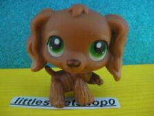 ORIGINAL Littlest Pet Shop spaniel 252