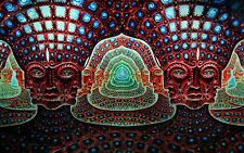 "Psychedelic Trippy Art Silk Cloth Poster 40 x 24"" Decor 113"