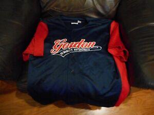 Jeff Gordon blue baseball style jersey sz L