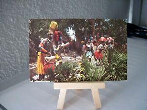 Vintage Disneyland postcard the Jungle Cruise natives headhunter Safari Disney