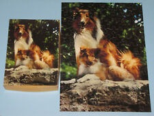"VTG SPRINGBOK CHILDREN'S JIGSAW PICTURE PUZZLE ""COLLIES!"" COLLIE DOG & PUPPY CIB"