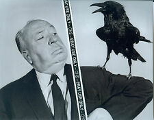 "ALFRED HITCHCOCK SHARP EARLY B&W 8x10 PHOTO ""THE BIRDS"" ""PSYCHO"" ""VERTIGO"""