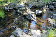 Big Creek Placer 20 Acre Placer Gold Mining Claims Equipment Land Groveland, CA
