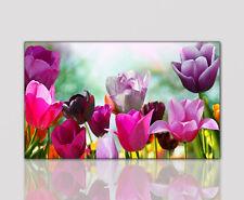 100x60cm Wandbild Tulpen im Frühling Kunstdruck auf Leinwand modern