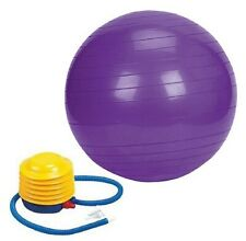 Exercise Gym Ball Yoga Fitness Abs Pregnancy Ball Core Strength 65cm Purple