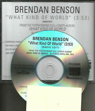 BRENDAN  BENSON What Kind of World w/ RARE RADIO EDIT PROMO DJ CD single 2012