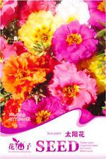Original Package 200 Sun Plant Seed Portulaca Grandiflora Flower Garden Hot A022
