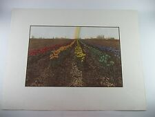 Alice Asmar IRIS Goddess of the Rainbow Lithograph Print, Signed Numbered 35/100