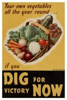 Dig For Victory Now World War II Propaganda Poster 12x18 inch