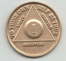 1 Year - I Years - Alcoholics Anonymous AA recovery medal token chip coin