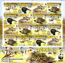 TOKELAU 2007 MNH Sheet, WWF, PACIFIC GOLDEN PLOVER, Birds