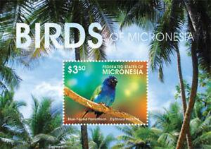 Micronesia 2015 - Birds of Micronesia Stamp - Souvenir Sheet - MNH