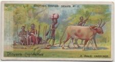 Zulu African Native Ox Carriage 100+ Y/O Trade Card