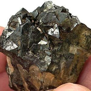 Cluster of Magnetite Crystals from Utah
