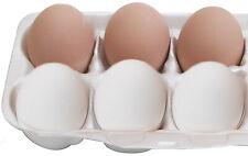 price of 1 Dozen Eggs Travelbon.us