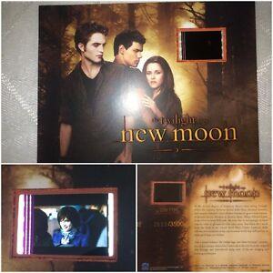 Twilight New Moon Limited Edition Ashley Greene Film Cell #4