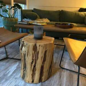 "Reclaimed Tree Stump Table - XL 18"" H x 18"" diameter"