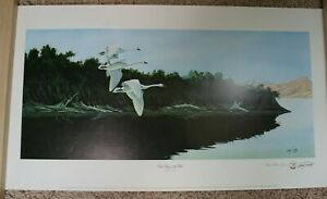 """Signed, LE 1/150 """"White Wings of the Wild""""  Swans Larry Toschik Lithograph"""