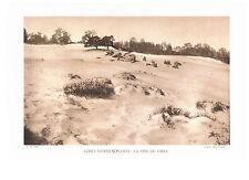 FORÊT D'ERMENONVILLE : LA MER DE SABLE photo 1934