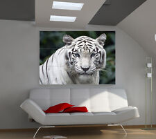 """Tiger White Huge Art Giant Poster Wall Print 39""""x57"""" a571"""