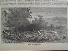 Civil War Relics on a Battlefield 1866 Antique Print Harper's Weekly