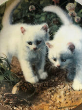 """""""A Chance Meeting:White American Shorthairs� By Amy Brackenberry; First Issue"""