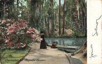 Postcard Magnolia Gardens Charleston South Carolina Posted 1906