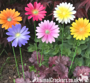 SET 6 Coloured metal 58cm flower garden ornament decoration Mothers Day Gift
