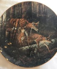 Danbury Mint Wonders of the Wilderness Trail Blazers,Michael Sieve PlateNo.D5552