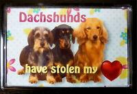 Dachshund Gift Dog Fridge Magnet 77x51mm Birthday Gift Xmas Mothers Day Gift