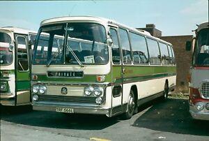 TRF 566L Turner, Brown Edge 6x4 Quality Bus Photo