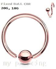 Rose Gold IP Fixed Ball Captive Bead Ring Hoop Nose Ring Labret Tragus Earring
