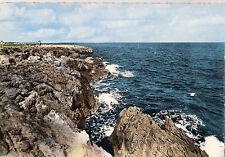 BF12900 un joli point de vue  saint pierre plage aude  france front/back image
