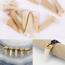 Animal Shark Tooth Fossil Natural Marine Pendant DIY Jewelry Making Nacklace