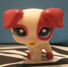 Littlest Pet Shop #1200 Cream & Magenta Jack Russell Terrier Puppy Dog